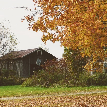 The Original Barn Photo